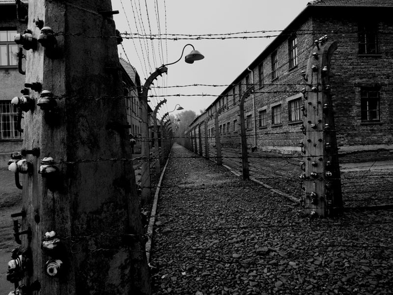 Black and white photo: Auschwitz with barbed wire fencing